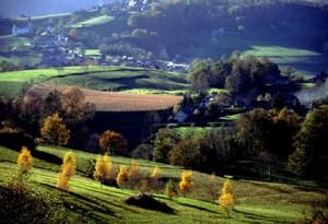 2-des-paysages-jardines